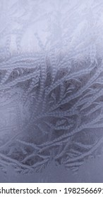 frost on a frosen window