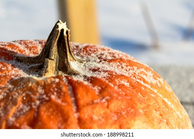 Frost on the Pumpkin