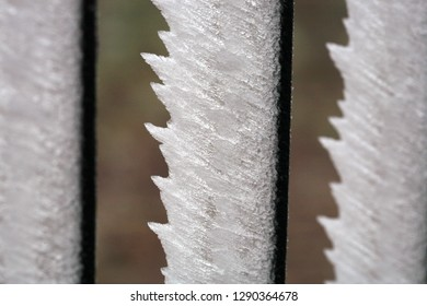 Frosted garden fence in country. Winter in a rural, home, herb garden. Macrophotography.