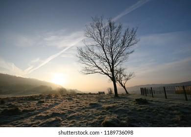 Frosty dawn, Pontypridd Common, Wales