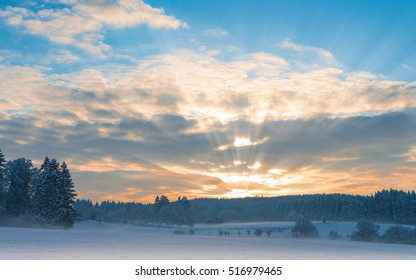 Frosty early morning winter panoramic scenery with rising sun sunbeam over frozen snowfield and snow-covered forest