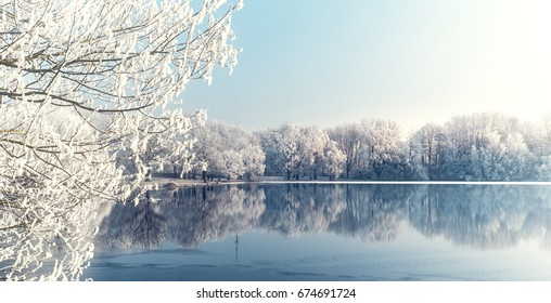 Frosty morning at a lake in Munich, Germany / WHITE REFLECTIONS