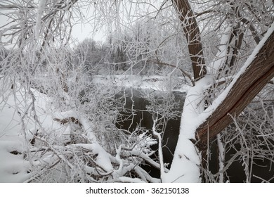 Frosty trees above a river with black colored water in Russia, Izh, Izhevsk, Udmurtia