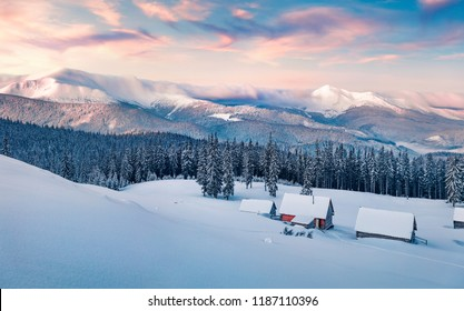 Frosty winter sunrise in Carpathian mountains with snow covered fir trees. Dreamy outdoor panorama, Happy New Year celebration concept. Artistic style post processed photo.