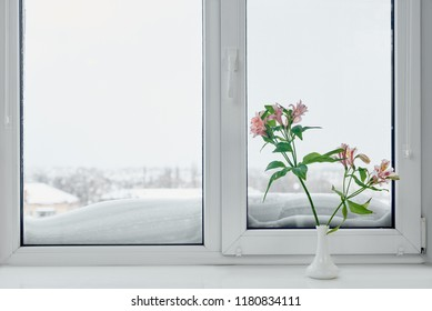 Frosty winter window view and vase with flowers on windowsill