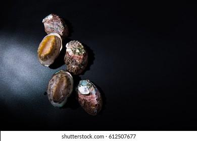 Frozen abalone in black background.