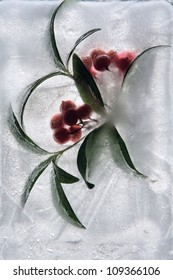 Frozen beautiful   red berry.  blossomsin the ice cube