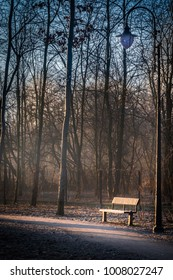 A frozen bench and park lamp next to a path lit by an orange sunrise on a cold winter morning. Orange sun light and blue, cold sky during beautiful weather.