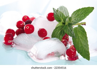 The frozen berries of a cranberry and leaves of mint on cubes of an ice.