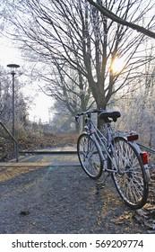 A Frozen Bike in a Park