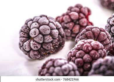 Frozen black berries on White background