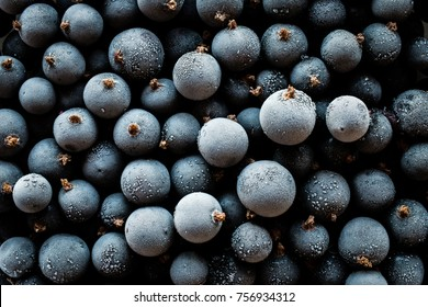 frozen black currant berries, top view, macro