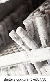 Frozen blood samples in sealed vials