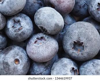 Frozen blueberries close up