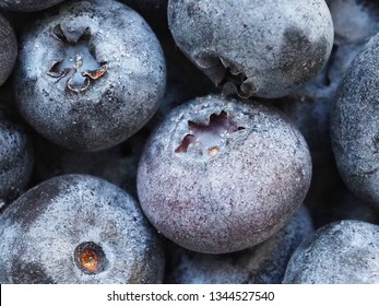 Frozen blueberries close up picture. Frozen blueberry, top view. Macro photography.