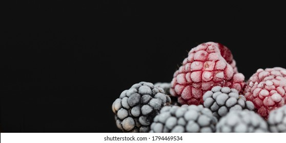 Frozen blueberries and raspberries close up picture. Berries in hoarfrost are on the black background. Ingredients for making desert. Banner for restaurant.