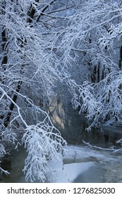 Frozen branches partially covering the creek with some light reflected on the cold liquid surface deeper inside