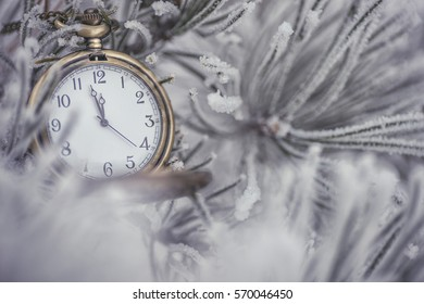 Frozen coniferous branches with pocket watch in white winter, winter and happy new year background