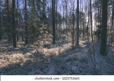 frozen country side by the forest covered with snow - vintage retro look