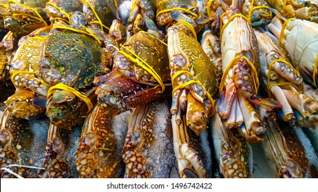 Frozen crab, Close up fresh crab on ice bucket or frozen crab in grocery store use for raw food background