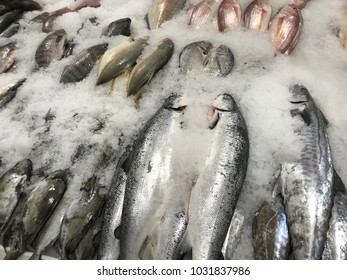 Frozen fish on the market.