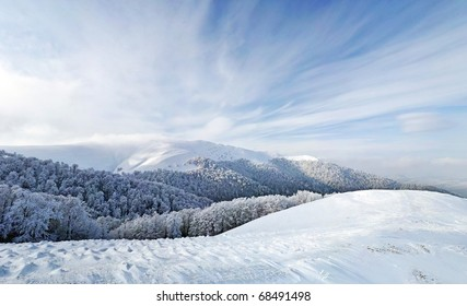 Frozen forest and meadows in Carpathians panorama. Ukraine