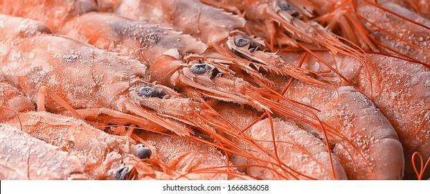 frozen king prawns, macro background seafood, fresh red prawns