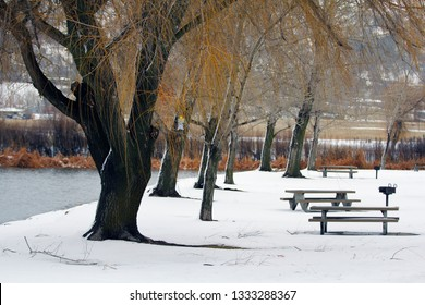 A frozen lake in the middle of winter with picnic benches and a trap for insects.