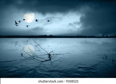 Frozen lake in moonlight