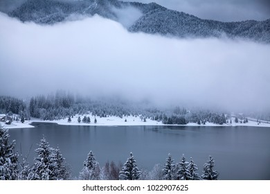 Frozen lake and pine trees in snow at Colibita. Romania early morning winter secen.