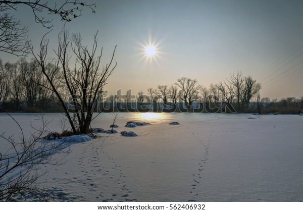 Frozen Lake Savica Sanci Park Zagreb Stock Photo Edit Now 562406932
