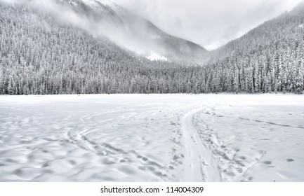 Frozen lake with a sled train in the mountain with trees covered in snow.