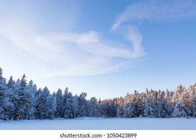 Frozen lake and snow covered forest at sunny winter day in Finland