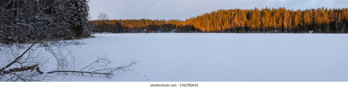 Frozen lake in the winter forest. Winter landscape. Panorama.