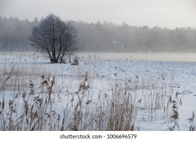 Frozen lake in a winter landscape.