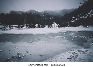 Frozen lake in the woods