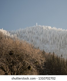 frozen Lysa hora hill from Butoranka in Moravskoslezske Beskydy mountains during winter morning with clear sky