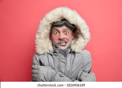 Frozen man trembles from cold has red face covered by ice frosted beard wears jacket with hood needs to warm during winter expedition poses over coral background. Cold weather low temperature