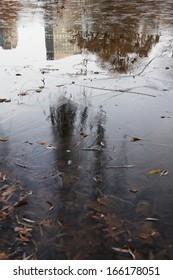 Frozen pond in Boston public garden