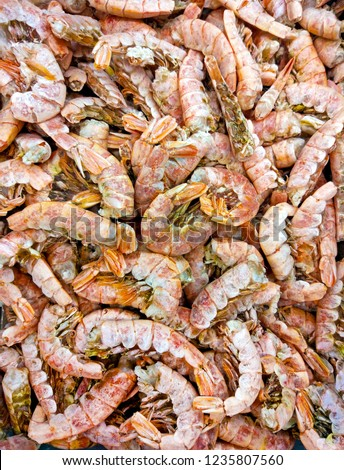 Frozen Raw Argentine Red Shrimp Closeup Stock Photo Edit Now