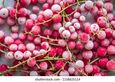 Frozen Red Currants (Berries, Fruit) for the Winter & Christmas