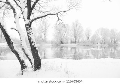 frozen river and trees in winter season