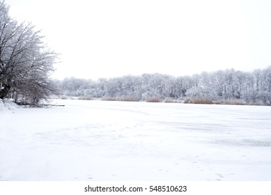 Frozen river view surrounded by snowcovered deciduous trees
