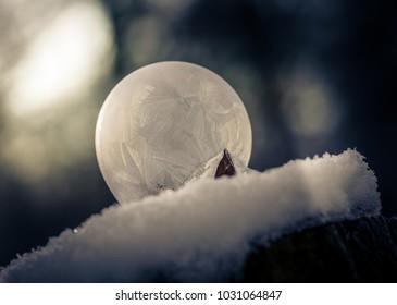 frozen soap bubble in nature