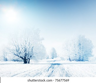 Frozen trees in snowy field with road and clear sky