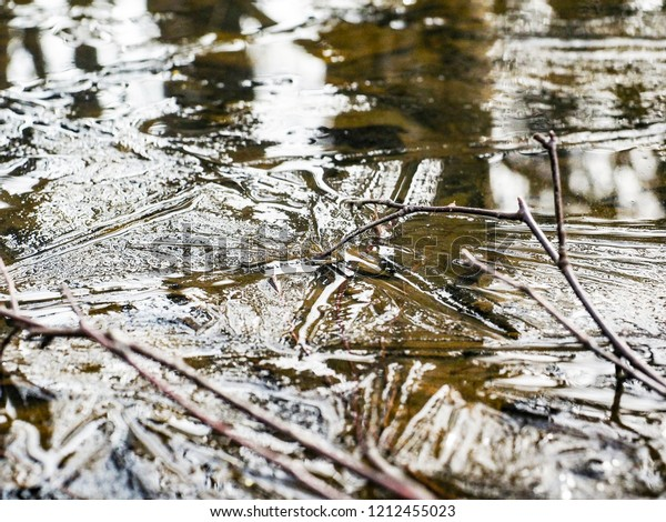 Frozen water, thin ice layer, with branches at extreme closeup