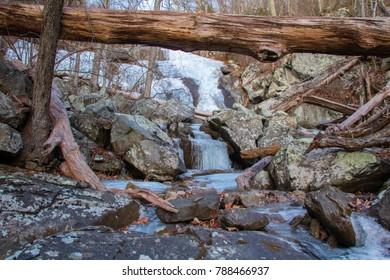 Frozen waterfall under a fallen tree