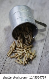 Frozen Wax Moth Larvae in a measuring cup
