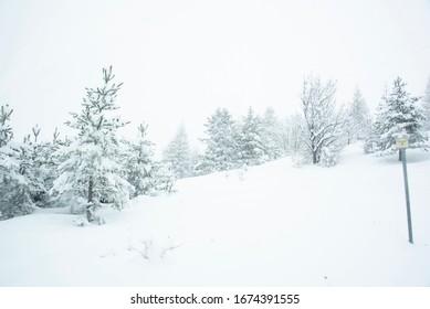 frozen winter landscape in the italia alps