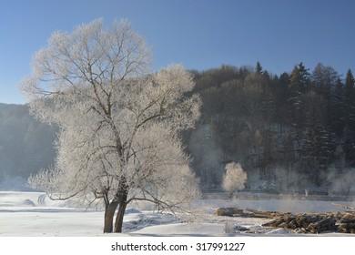 frozen winter morning mountain landscape. Vama Buzaului. Romania
